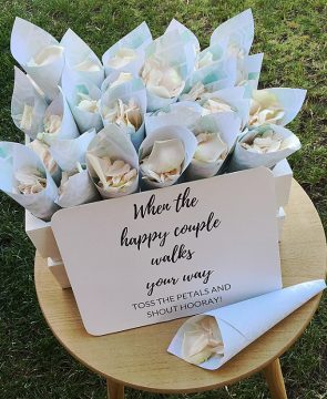 Wedding ceremony petal cones