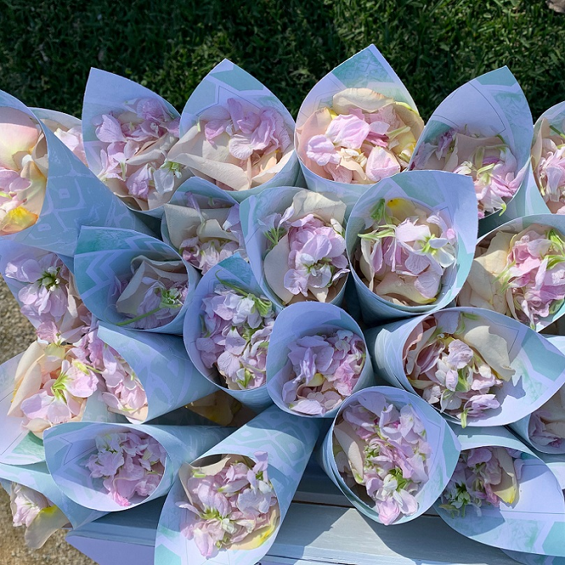 wedding petal cones